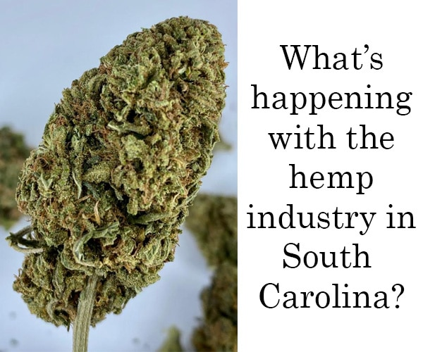 is hemp flower legal in south carolina image and text